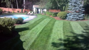 landscape maintenance NH
